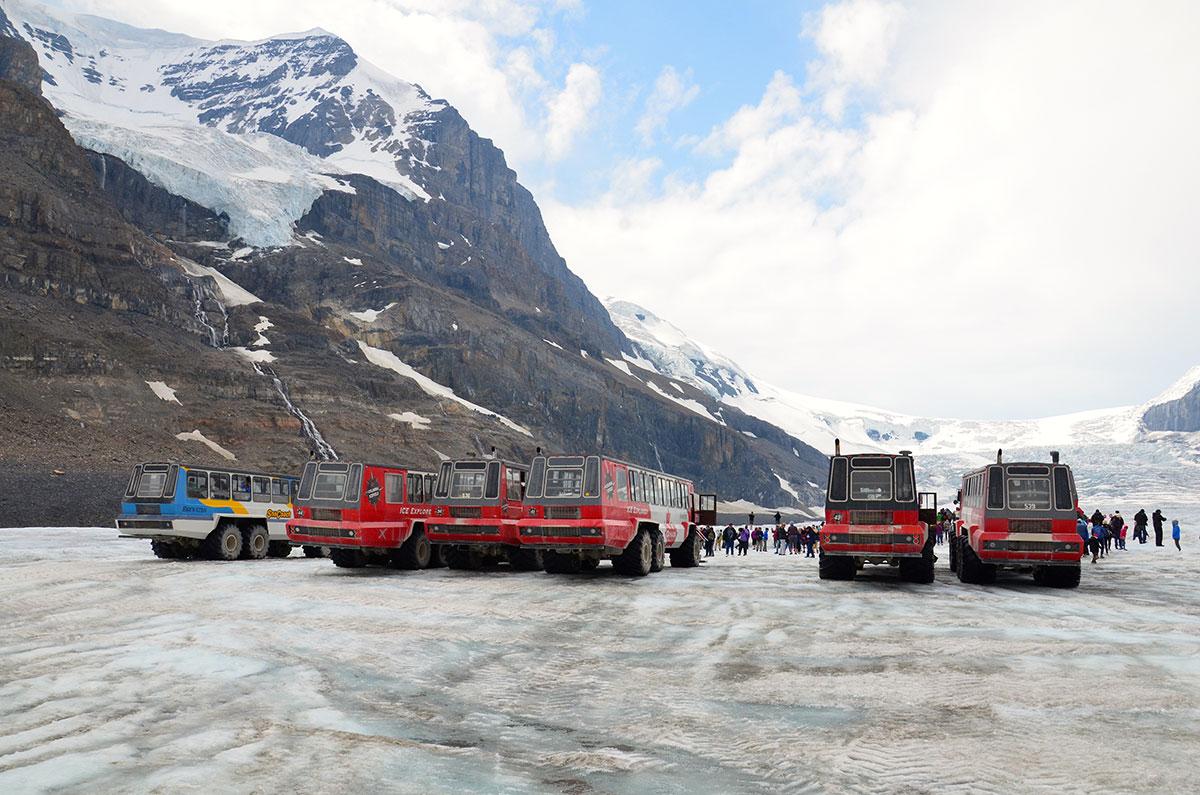 Columbia Icefield gletsjer i Canada