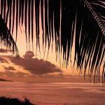Fem tips til Flying Fish Cove og ni tips til Juleøen
