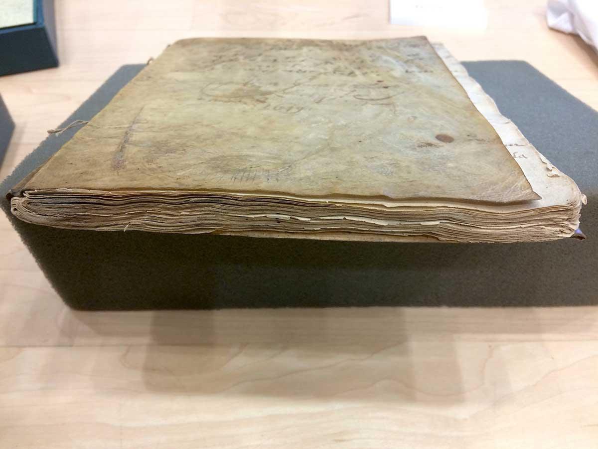 Jens-Munks-gamle-dagbog