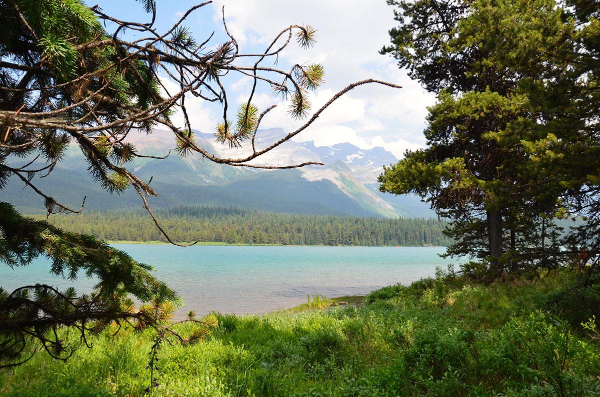 Maligne Lake i Jasper Nationalpark
