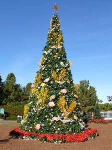 Overdådigt juletræ i Seaworld i San Diego