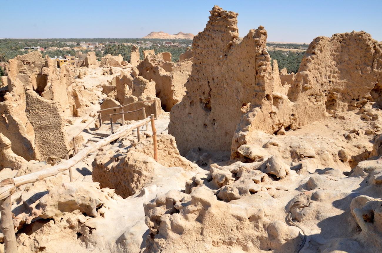 Fra toppen af fortet Shali midt i byen kan man rigtigt få et indtryk af hele oasen. Mod syd er der store sandklitter og den rigtige ørken begynder. Mod vest og øst ligger der to saltsøer og ellers er her dadelpalmer i millionvis over hele området. Foto: Anette Lillevang Kristiansen